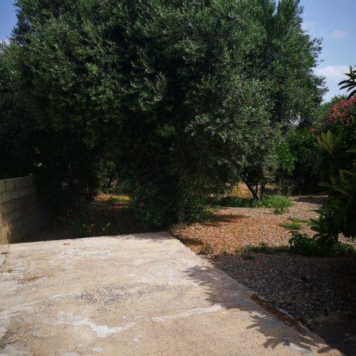 Apartment Is Fiascus giardino